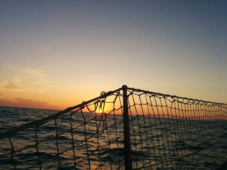 Escursioni in barca Isole toscane