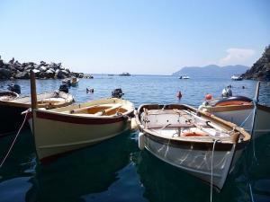 Day cruiser in barca Cinque Terre