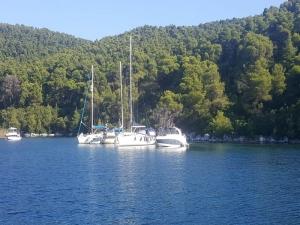 Team building barca vela Riviera del Conero