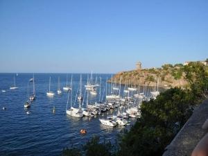 Sagra del Totano - We in barca a vela Capraia